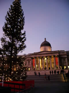 Christmas tree in Trafalgar Square, December 2005